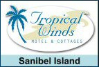 Tropical Winds